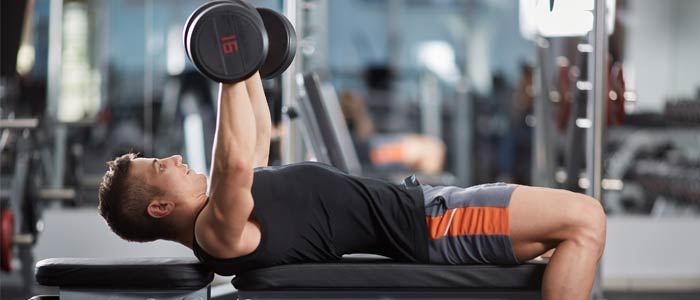 Use Weight Bench for Beginners
