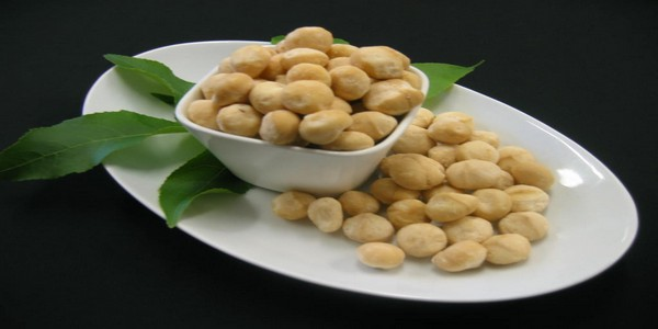About Macadamia Nuts – You need to know